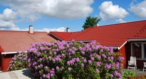 norsk takfornying plapre